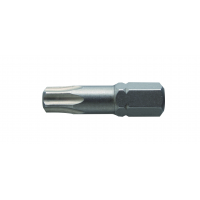 Antgaliai TORX T30 / 25mm*2vnt / S2 plieno
