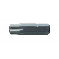 Antgaliai TORX T40 / 25mm*2vnt / S2 plieno