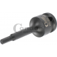 Antgalis H5mm 1/2 Cr-Mo HEX5