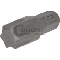 Antgalis TORX T55 / 8mm / 30mm ilgio